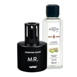 Lampada catalitica Berger collezione MR. con fragranza Terre Sauvage da 250 ml